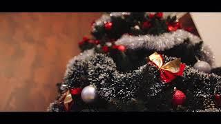 Gifts Under A Christmas Tree - Free Stock Footage Video || Video Board