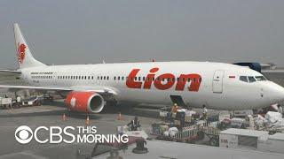 Lion Air plane crashes off Indonesia with 189 on board