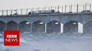 Train accident on Danish bridge kills six - BBC News