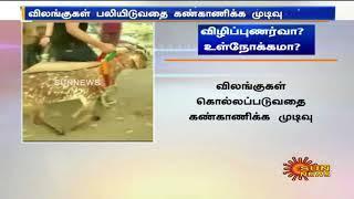 Animal Welfare Board |விலங்குகளை பலியிடுவதற்கு எதிராக விலங்குகள் நல வாரியம் விழிப்புணர்வு பிரச்சாரம்
