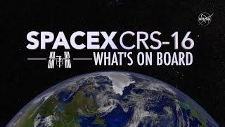SpaceX's CRS-16 Mission to the Space Station: What's On Board?