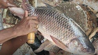 Awesome Rohui Fish Cutting Skills Live in The Fish Market ????Fillet Big Fish Slicing