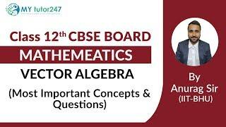 (Board Exam) CBSE Mathematics Class 12 || Most Imppotant Questions and Concepts || #CbseMaths