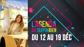 AGENDA The Camp, Borderline, Cats on Trees , Sniper, activités enfants ...