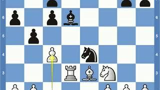 Match of the Century: Fischer vs Spassky Game 16