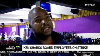 KZN Sharks Board employees on strike