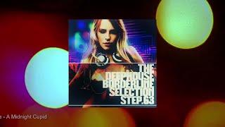 The DeepHouse Borderline Selection - Step. 63