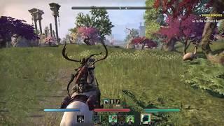 The Elder Scrolls Online: Summerset - Warden walkthrough part 25 ► 1080p 60fps - No commentary ◄